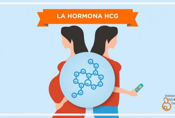 La Hormona HCG
