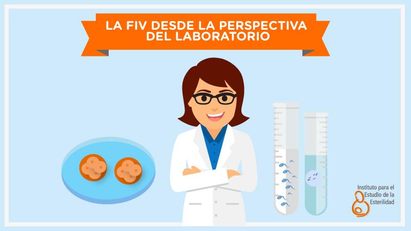 La fecundación «in vitro» desde la perspectiva de nuestra bióloga