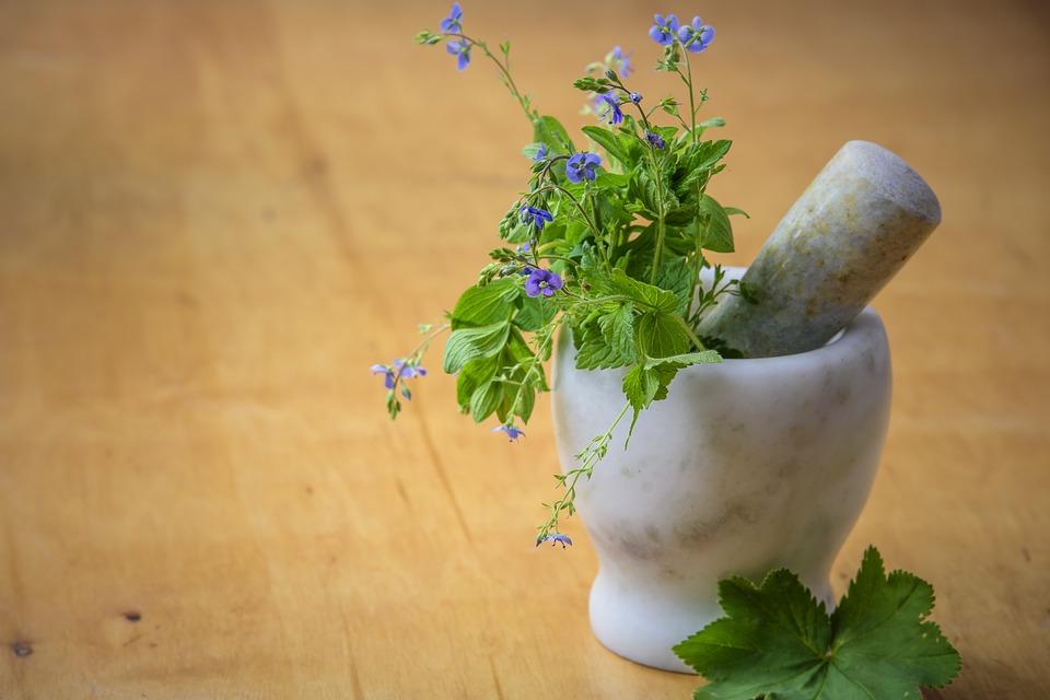 Mitos y leyendas sobre los medicamentos naturales